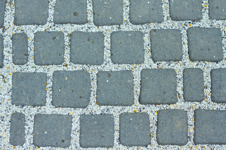 creeping fig: Pathway pattern of pave brick rectangular road background
