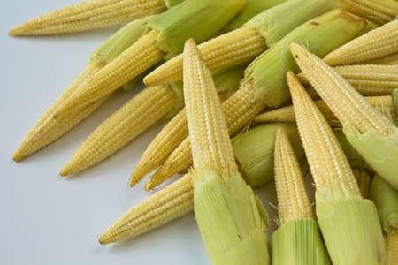 Baby corns on white background   Candle corn  photo