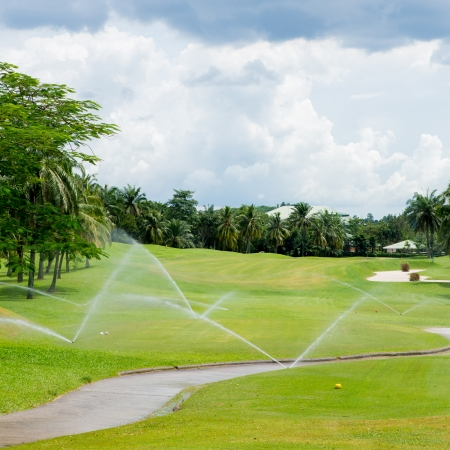 Watering in golf course Stock fotó