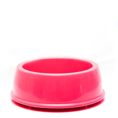 pink Pet Bowl Isolated on White Background. photo