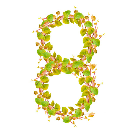 Number 8, alphabet of green leaves photo