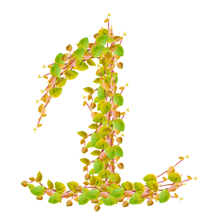 ecologist: Number 1, alphabet of green leaves