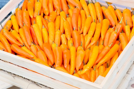 fatih: Yellow Peppers  in basket Stock Photo