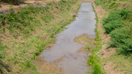 run out: run out of water in the canal