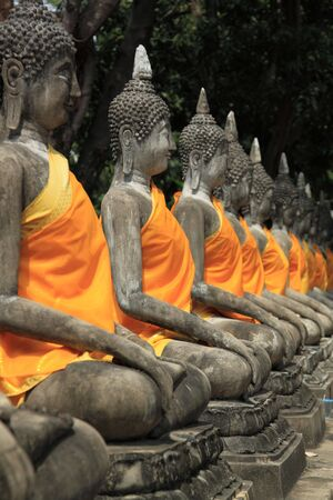 ayuthaya buddha image photo