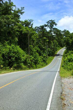The road, khao-yai national park, thailand photo