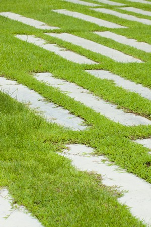 Abstract of concrete sidewalk and grass  photo