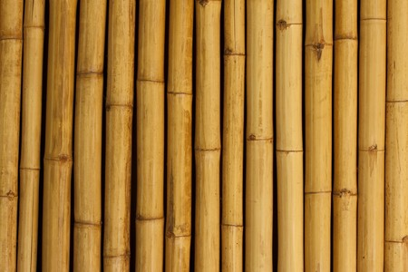 Bamboo wallbackground