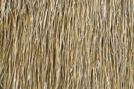 Walls of straw dry  Banco de Imagens