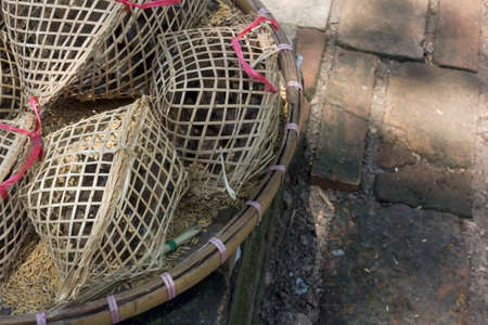 merit: Cage the bird for release in the merit of Thailand
