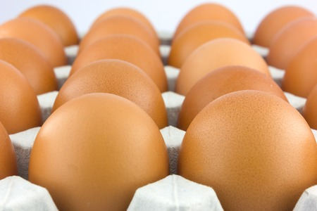 indispensable: Eggs are a useful source of protein, iodine and essential vitamins and are almost indispensable to the cook.