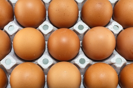 indispensable: Eggs are a useful source of protein, iodine and essential vitamins and are almost indispensable to the cook  Hens