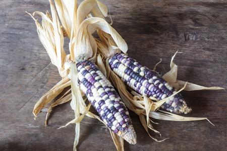Corn, Fresh corn on wooden background. photo