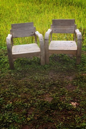 Wooden chairs with the rice field background in countryside at Chiang Mai, Thailand photo