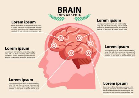 Scientific medical illustration of human brain stroke illustration. Types of human brain stroke illustration. vector