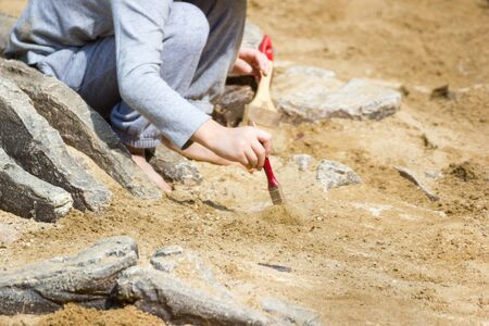 Children are learning dinosaur remains, Excavating dinosaur fossils simulation in the park.