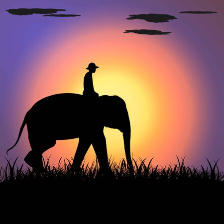 elephant Asia walking, graphics disign vector Illustration light silhouette background