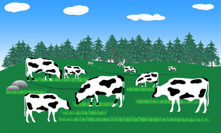 beef milk cow in farm in wild nature with mountain landscape view vector illustration