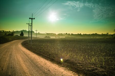 green rural field