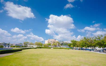 Bangkok Parks on the blue sky Zdjęcie Seryjne