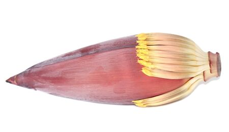 Banana flower isolated on white background photo