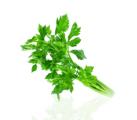 fresh vegetables Celery isolated on white background.