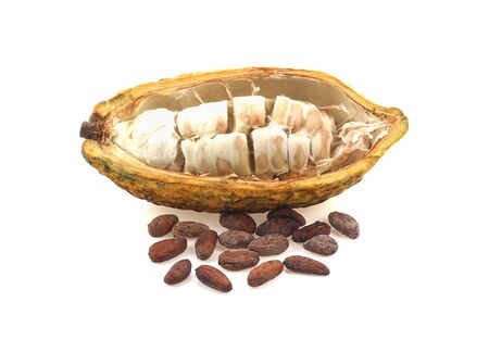 Cocoa with seeds isolated on white