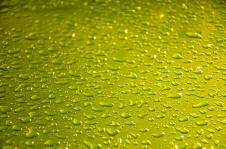 background yellow green water drops  photo