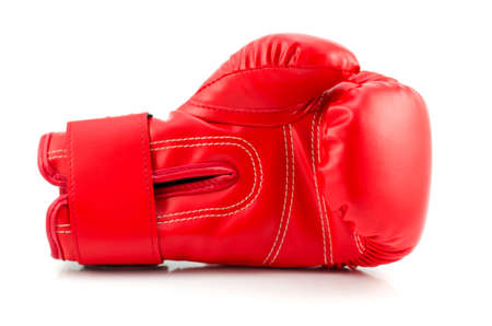 Boxing gloves with white