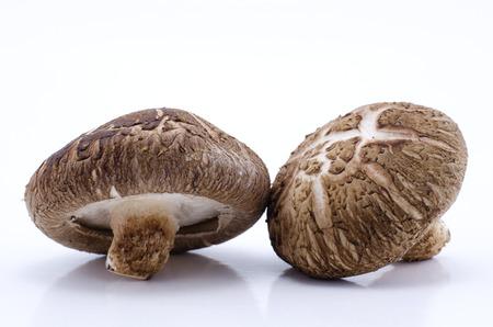 Fresh shiitake mushrooms isolated on white background
