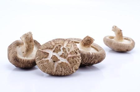 Whole raw Shitake Mushrooms isolated against white background