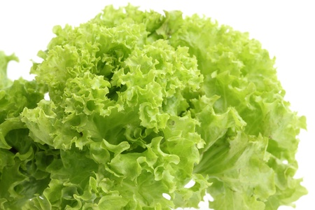 Salad isolated in white background Stock Photo - 10022124