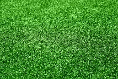 Grass background Stock Photo - 10264573