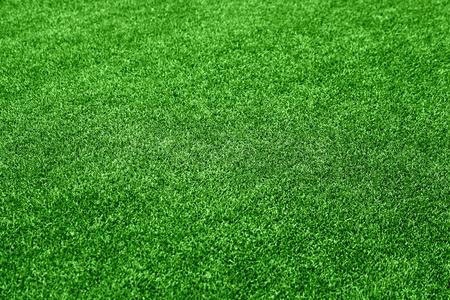 Grass background Stock Photo - 10401051