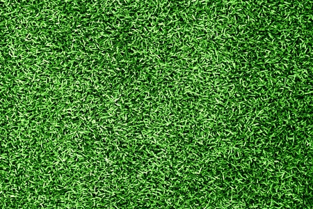 Grass background Stock Photo - 10427162