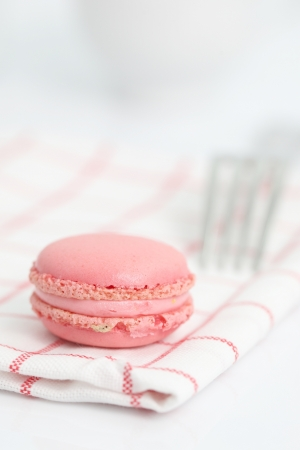Pink Macaron in close up isolated on white background photo