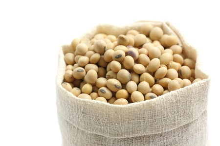 Soybean in sack isolated in white background