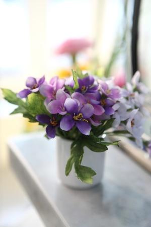 flores moradas: Flor morada en el vaso