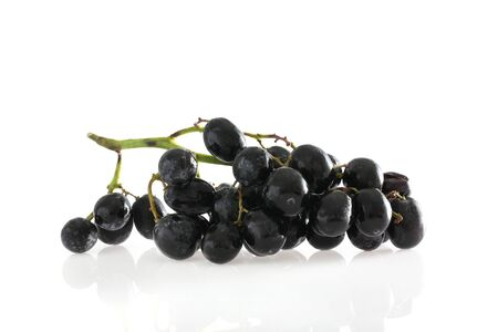 grapes isolated in white background photo
