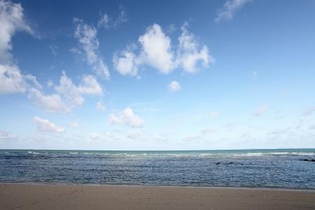 jasny: plaża i Morze Południowe