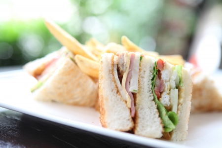 Club sandwich Stock Photo - 15535431