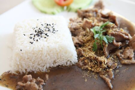 rice with fried pork photo