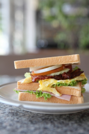 Club sandwich photo