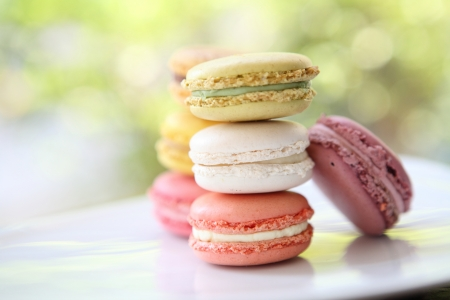 Colorful Macaron in close up  photo