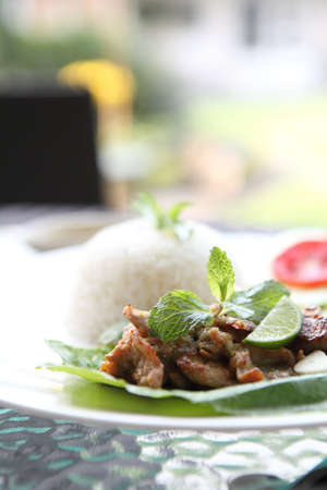 Spicy Barbecued pork with rice photo