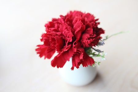 Red flower in jar photo