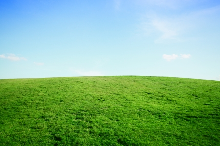 grass field: mountain with sky