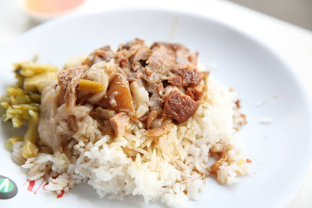 stewed: stewed pork leg on rice