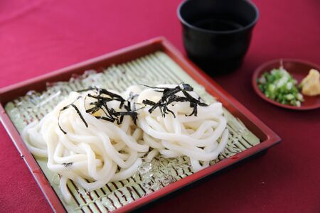 cold: Cold Udon noodles Stock Photo