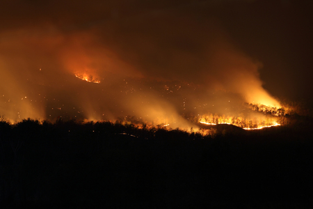 Bushfire Wildfire at night Stock Photo